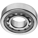 45 mm x 100 mm x 25 mm  SIGMA NU 309 cylindrical roller bearings